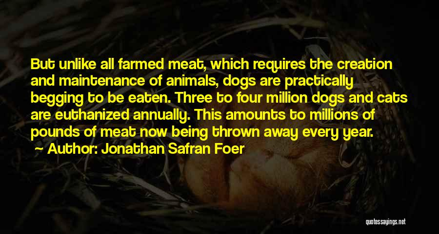 Cats And Dogs Quotes By Jonathan Safran Foer