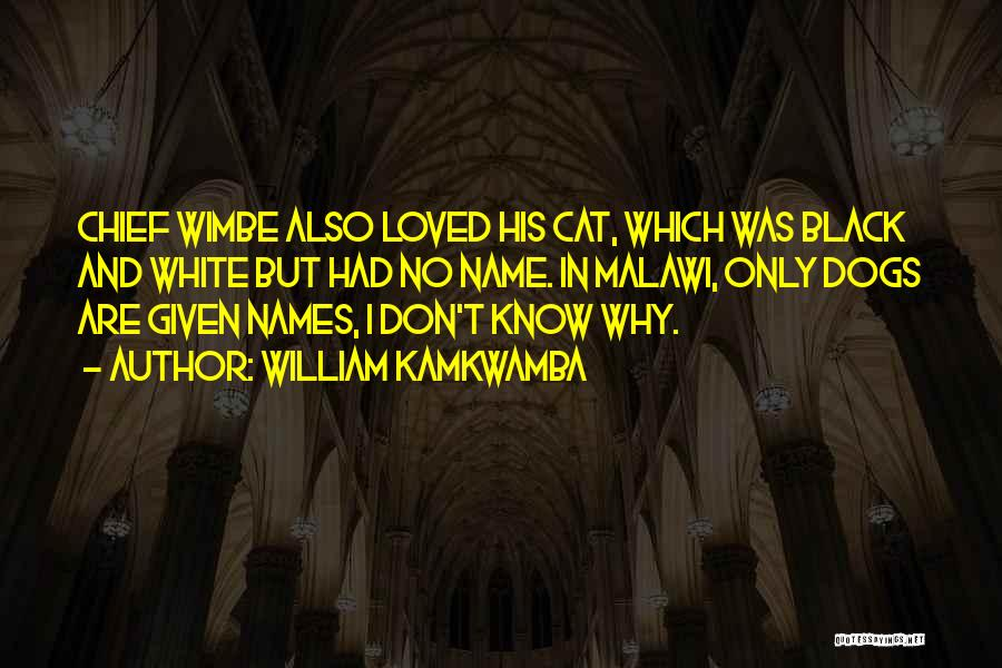 Cats And Dogs Quotes By William Kamkwamba