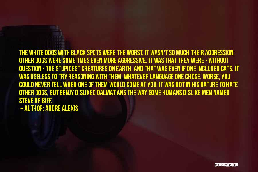 Cats And Humans Quotes By Andre Alexis