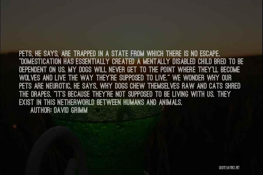 Cats And Humans Quotes By David Grimm