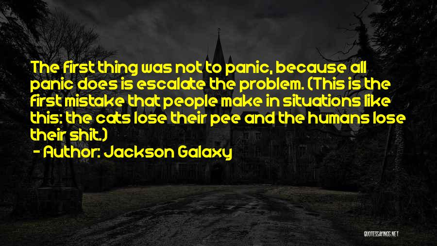 Cats And Humans Quotes By Jackson Galaxy
