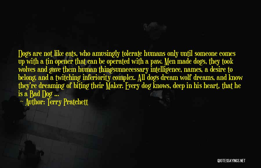 Cats And Humans Quotes By Terry Pratchett