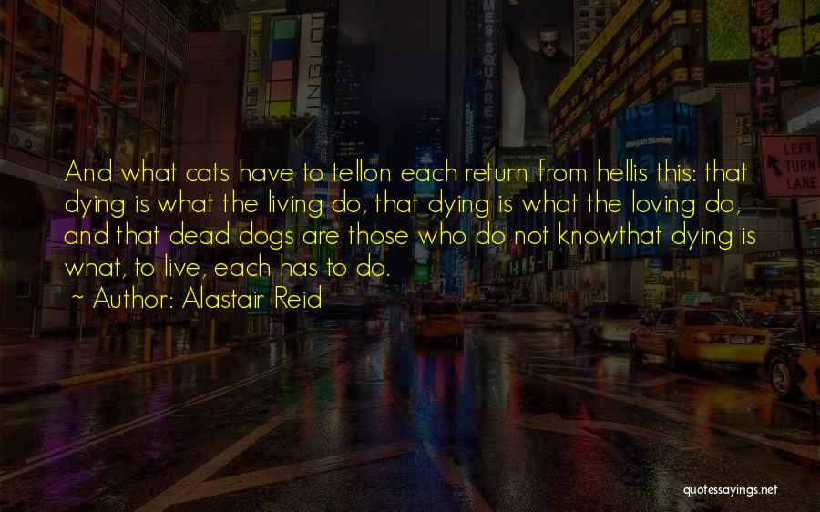 Cats And Life Quotes By Alastair Reid