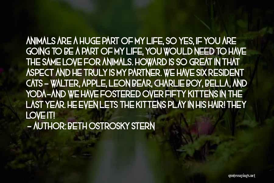 Cats And Life Quotes By Beth Ostrosky Stern