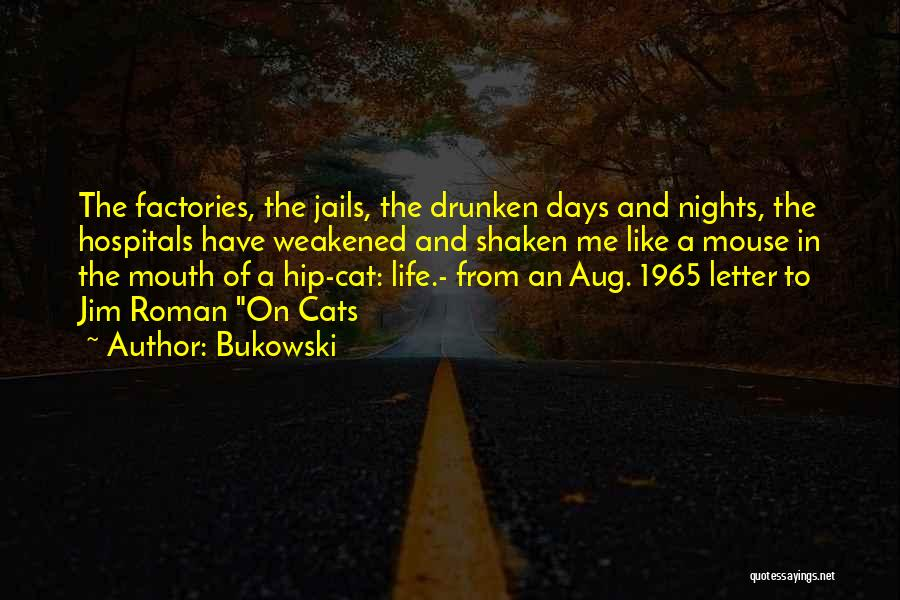 Cats And Life Quotes By Bukowski