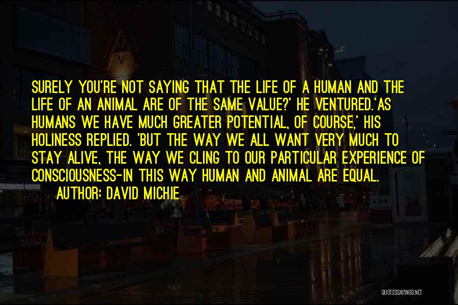 Cats And Life Quotes By David Michie