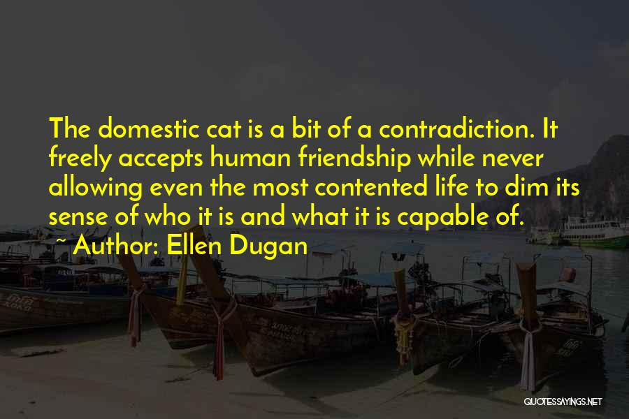 Cats And Life Quotes By Ellen Dugan