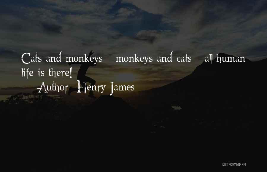 Cats And Life Quotes By Henry James
