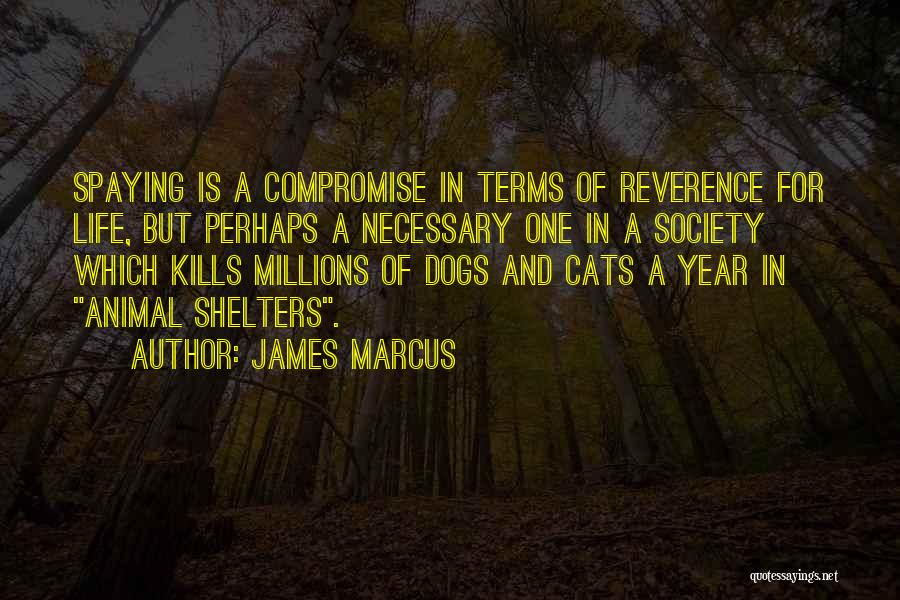 Cats And Life Quotes By James Marcus