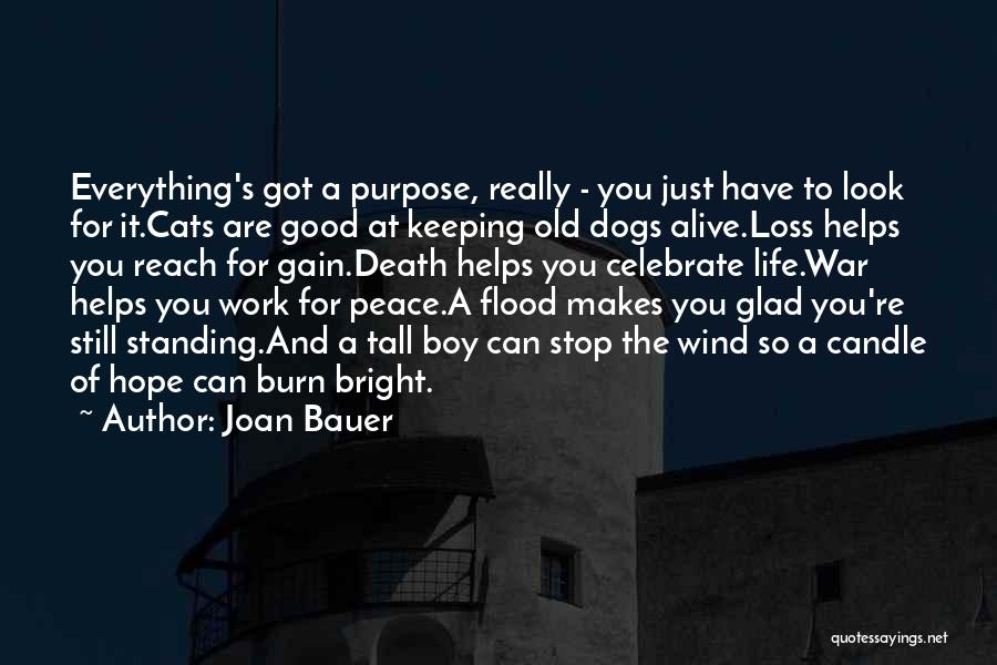 Cats And Life Quotes By Joan Bauer