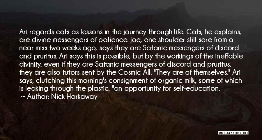 Cats And Life Quotes By Nick Harkaway