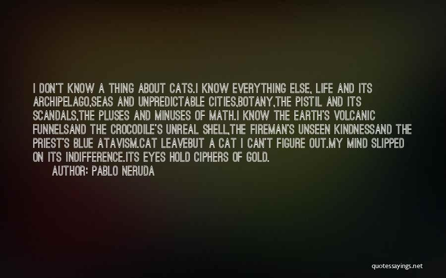Cats And Life Quotes By Pablo Neruda