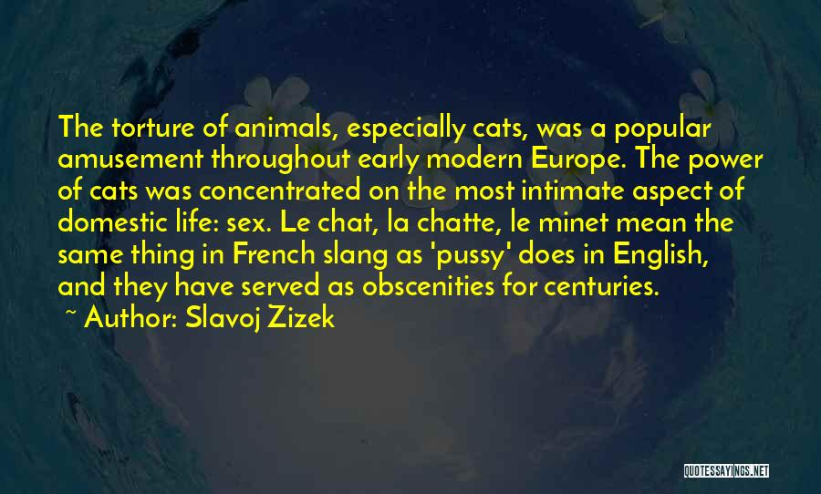 Cats And Life Quotes By Slavoj Zizek
