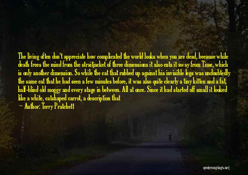 Cats And Life Quotes By Terry Pratchett