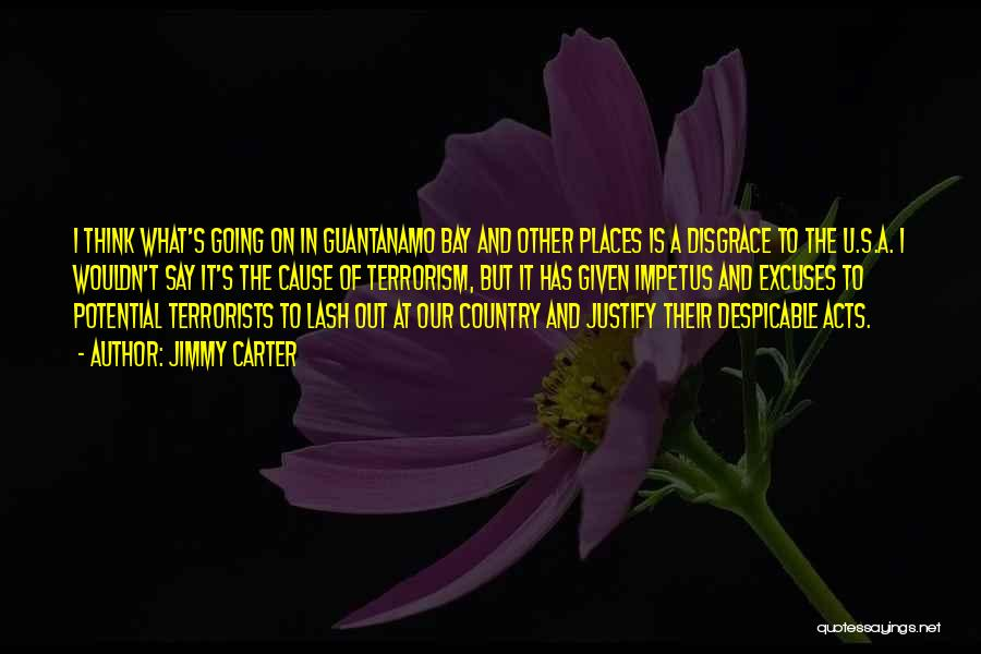 Cause Of Terrorism Quotes By Jimmy Carter