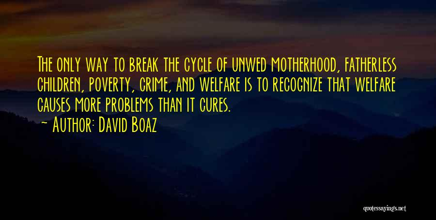 Causes Of Crime Quotes By David Boaz
