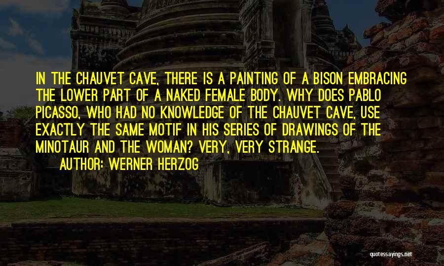 Cave Drawings Quotes By Werner Herzog