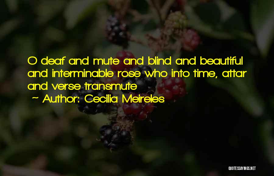Cecilia Meireles Quotes 1522146