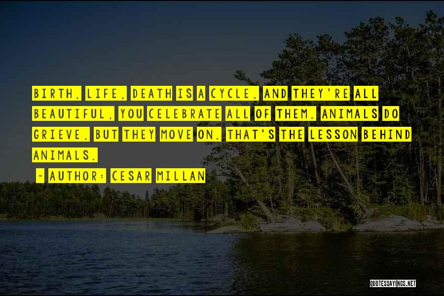 Celebrate Death Quotes By Cesar Millan