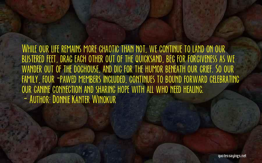 Celebrating Each Other Quotes By Donnie Kanter Winokur