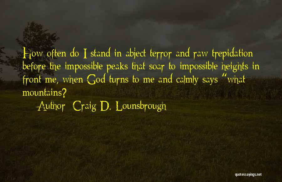 Challenges And Faith Quotes By Craig D. Lounsbrough