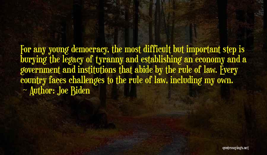 Challenges Of Democracy Quotes By Joe Biden