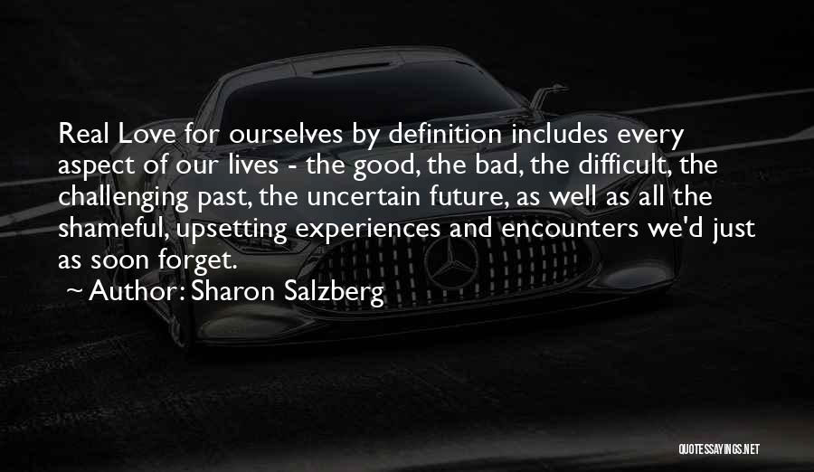 Challenging Ourselves Quotes By Sharon Salzberg