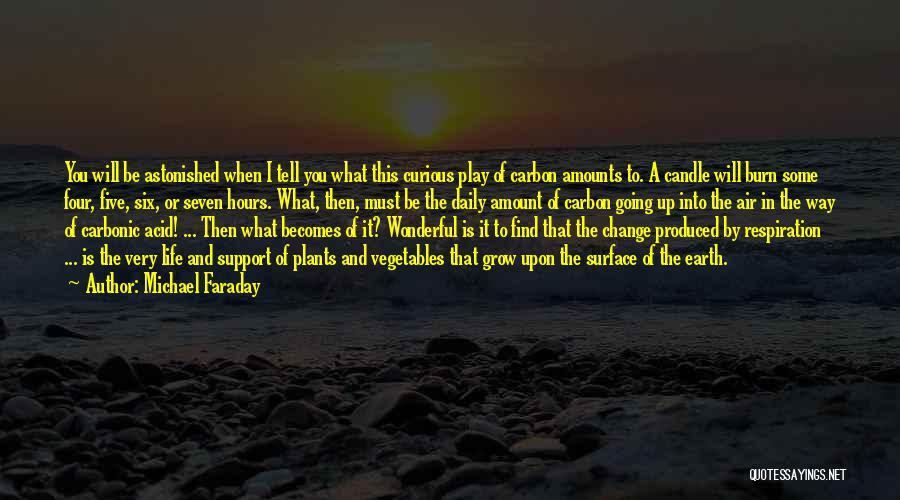 Change And Growing Up Quotes By Michael Faraday