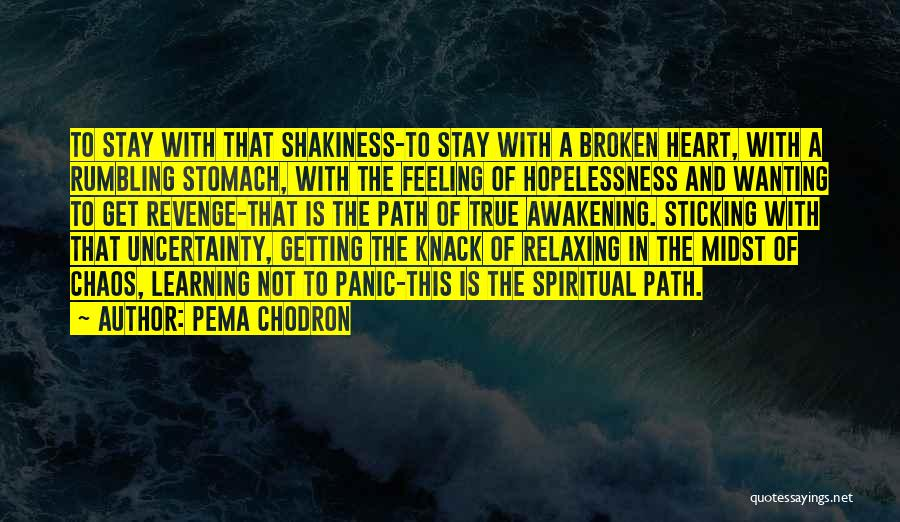 Changing Your Life Path Quotes By Pema Chodron