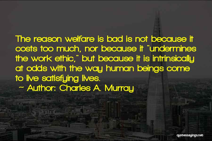Charles A. Murray Quotes 570359