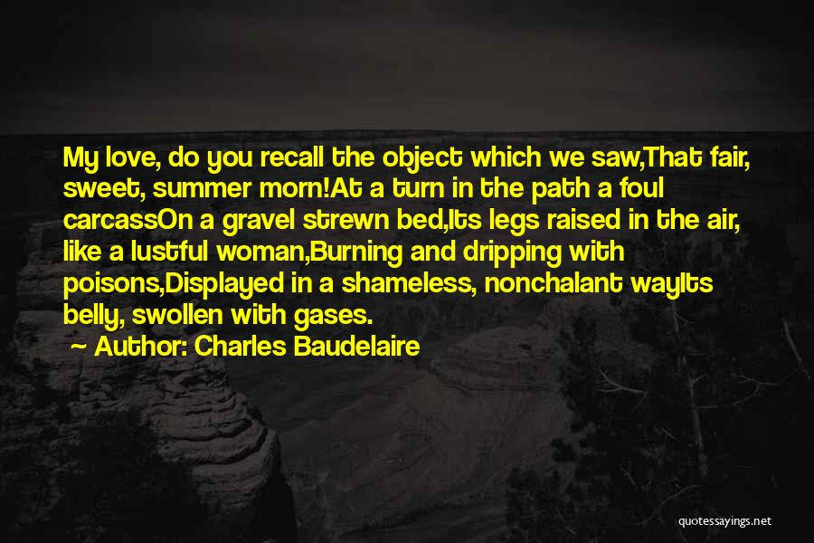 Charles Baudelaire Quotes 2094355