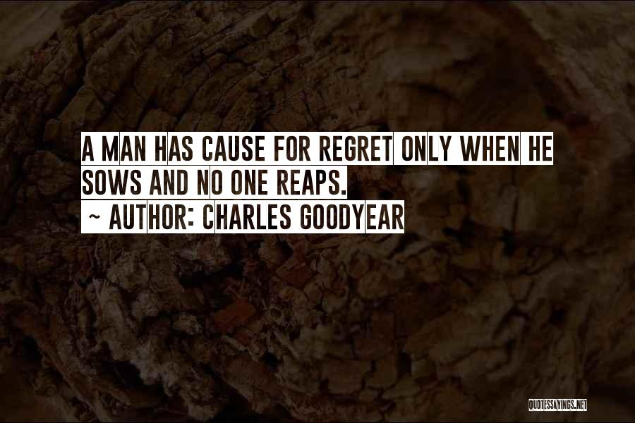 Charles Goodyear Quotes 1279446