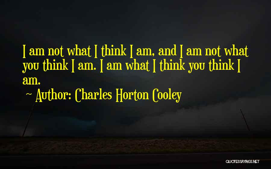 Charles Horton Cooley Quotes 1184120