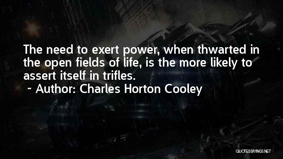 Charles Horton Cooley Quotes 169073