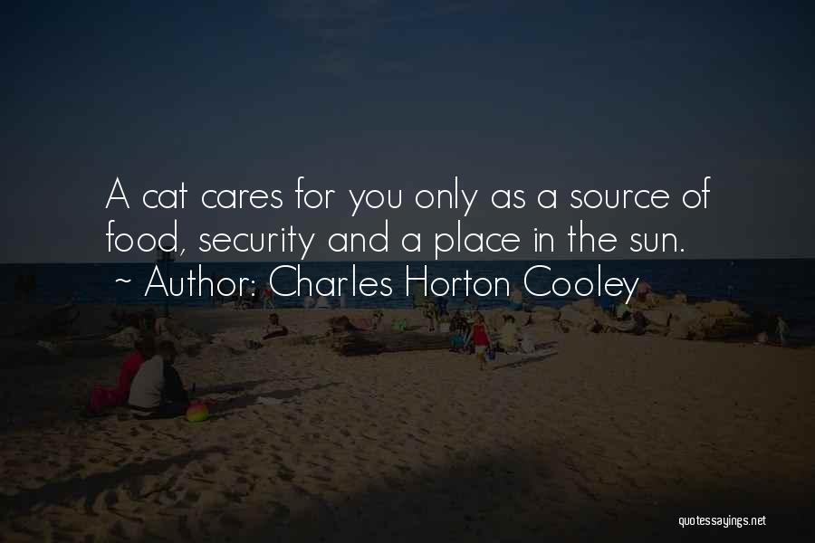 Charles Horton Cooley Quotes 1794009
