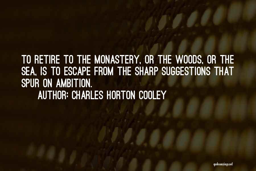 Charles Horton Cooley Quotes 1802561