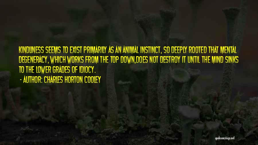 Charles Horton Cooley Quotes 465154