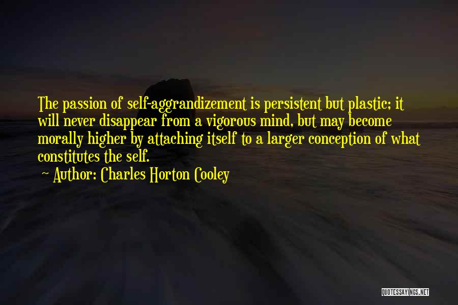 Charles Horton Cooley Quotes 507554
