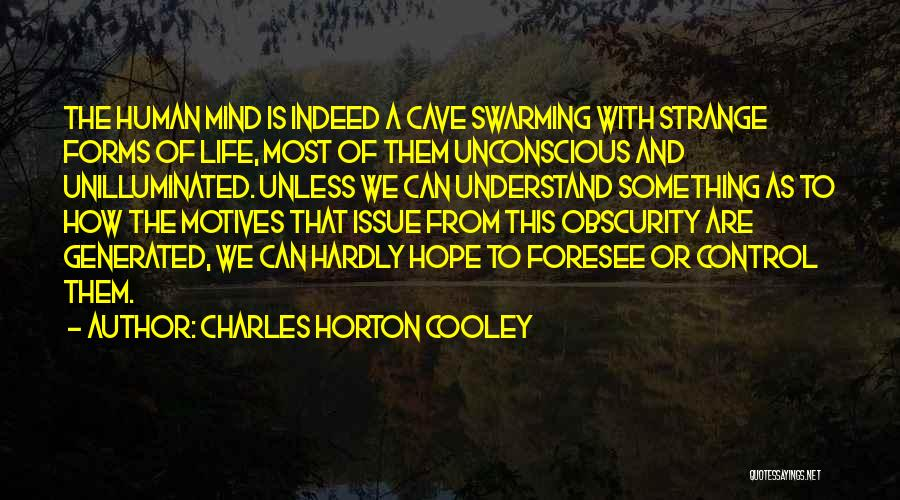 Charles Horton Cooley Quotes 587056