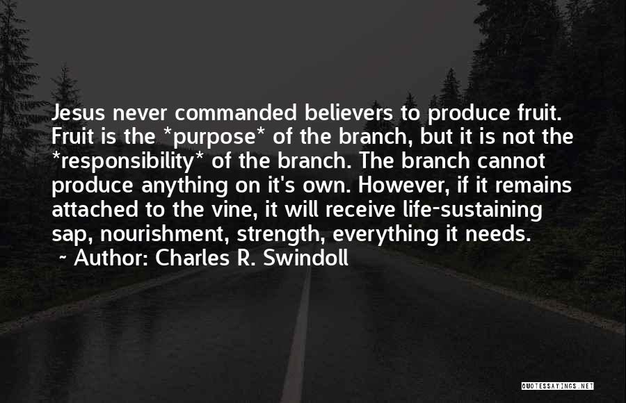 Charles R. Swindoll Quotes 1150856
