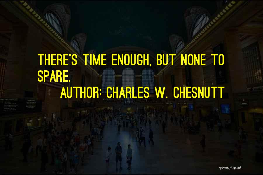 Charles W. Chesnutt Quotes 924587