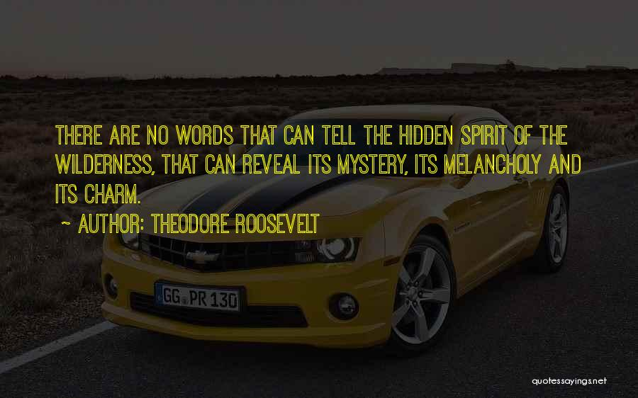 Charm Quotes By Theodore Roosevelt