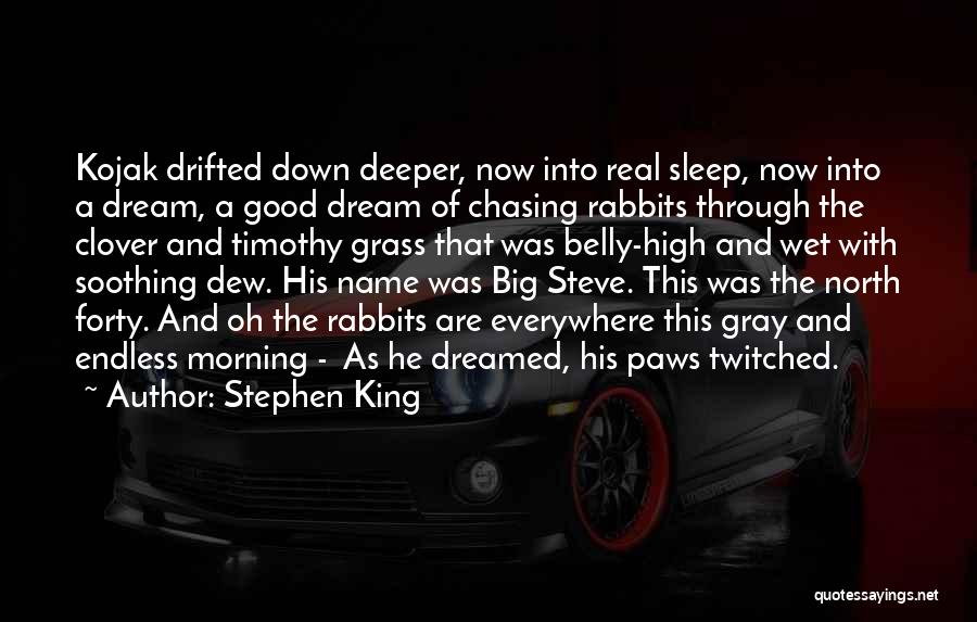 Chasing A Dream Quotes By Stephen King