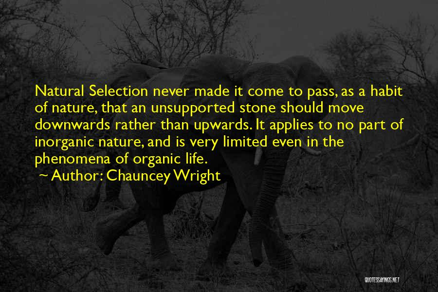 Chauncey Wright Quotes 1318147