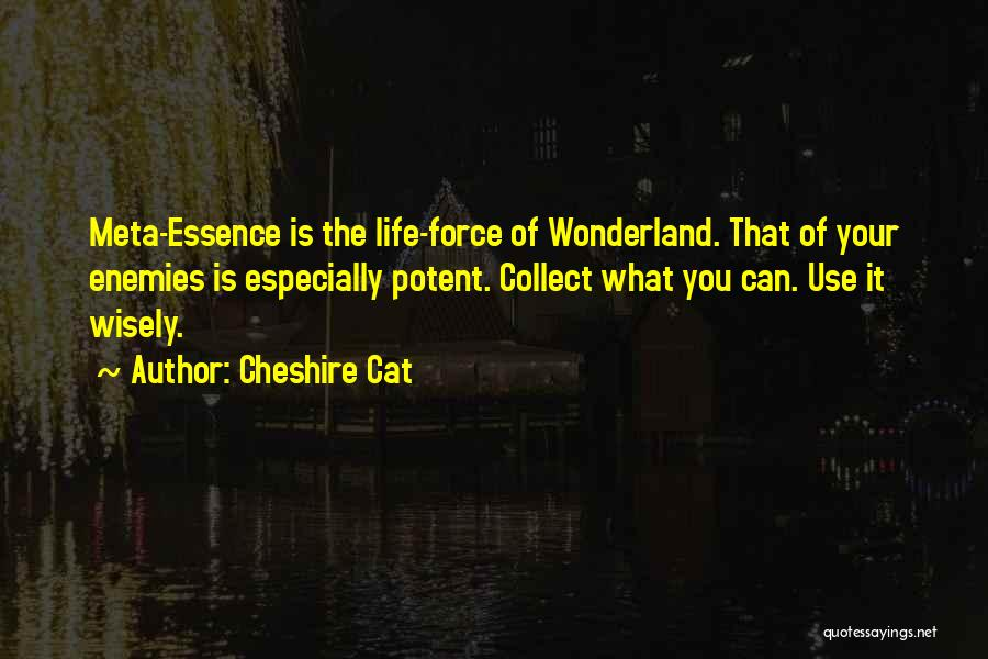 Cheshire Cat Quotes 1681049