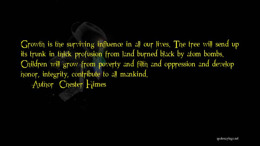 Chester Himes Quotes 1073530
