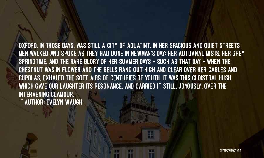 Chestnut Quotes By Evelyn Waugh