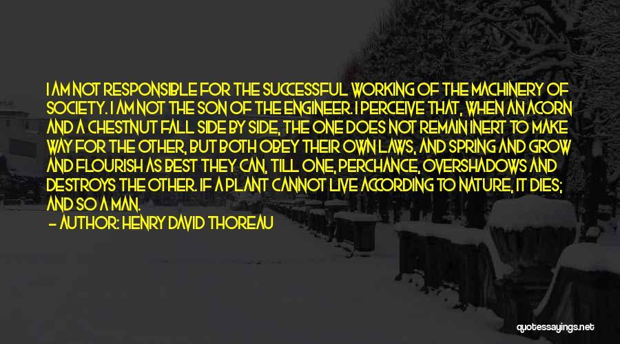 Chestnut Quotes By Henry David Thoreau
