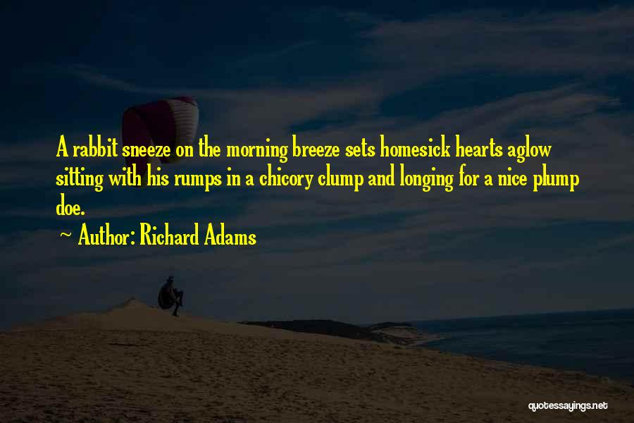 Chicory Quotes By Richard Adams