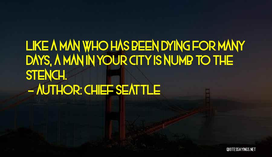 Chief Seattle Quotes 1409537